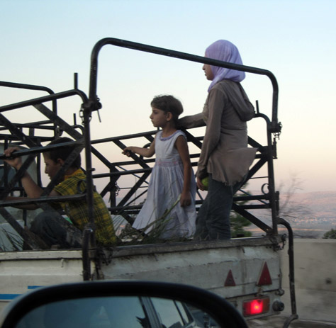 Syria_seat_belt