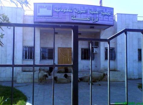 Syrian Computer Society, Hassake